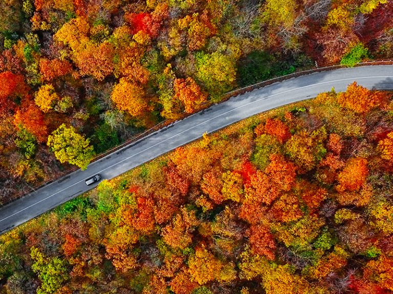 Overhead shot of a road